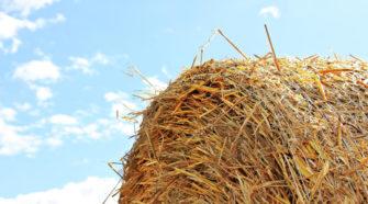 Elettronica e IoT per Macchinari Agricoli